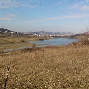 SHITET toke tek liqeni…